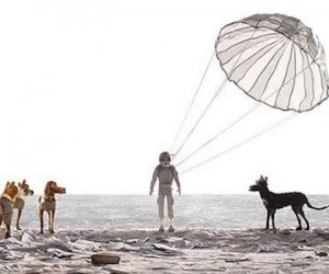 isle_of_dogs_xlg